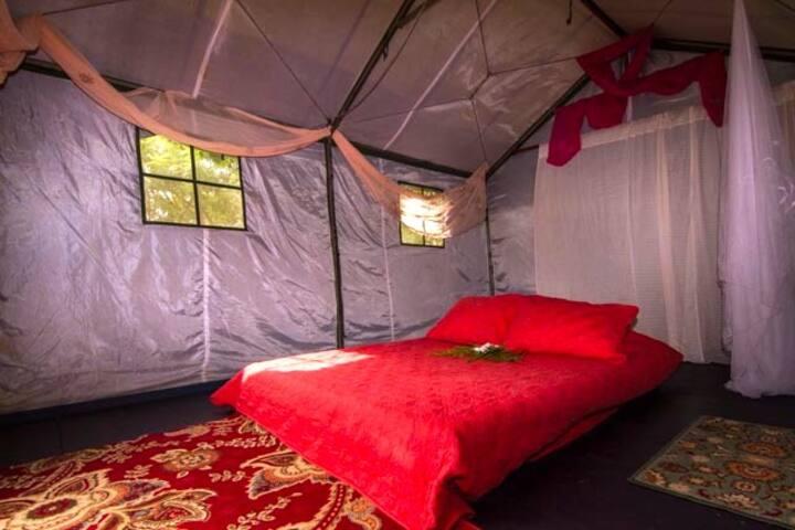 Tent Eco-Cabin