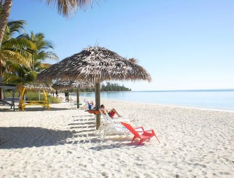 Vacation On The Beach - Beachfront 1 Bedroom