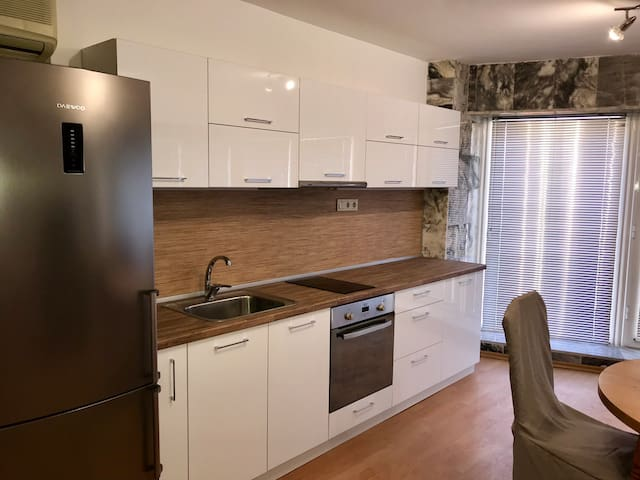 Spacious apartment on Main Street (City Center)