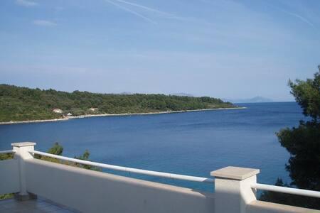 Apartment Liana, just by the sea! - Lumbarda