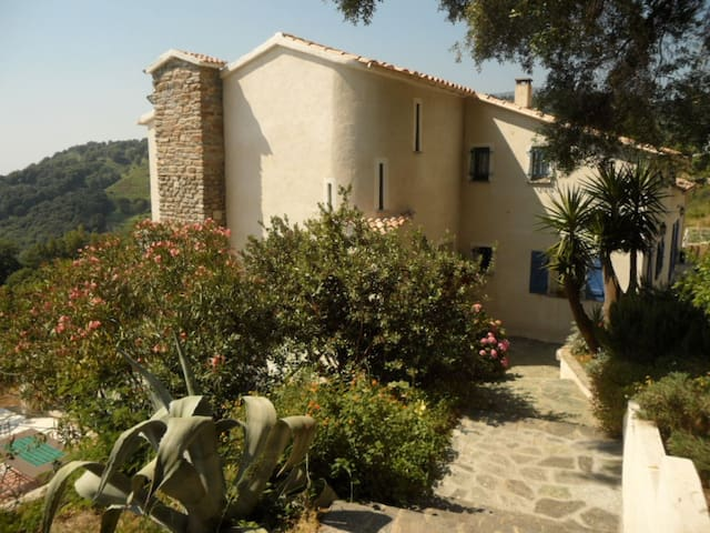 Chambres d'hôtes A SUERA - Sant'Andréa-di-Cotone - Bed & Breakfast