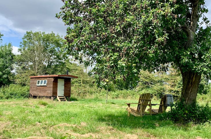 """The Gribble"" Handcrafted Shepherds Hut"