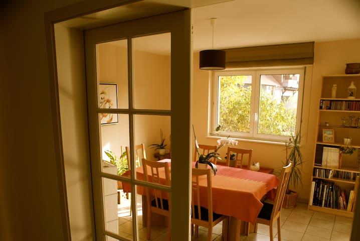 Au coeur d'une maison lumineuse, proche Strasbourg - Eckbolsheim - Maison
