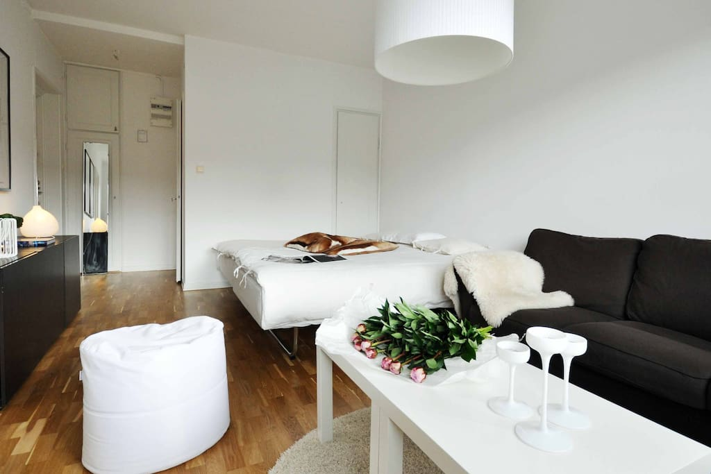 Enjoy this 32 sqm well planned apt during the Swedish summer.