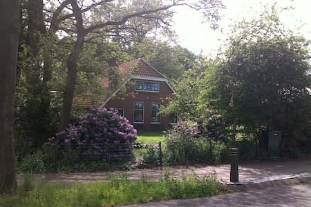 Lovely cottage with tons of privacy in Drenthe - Mantinge - Blockhütte