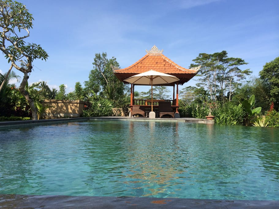 Large Private Pool in the middle of Ricefield View.