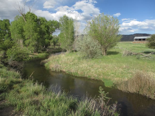 Mancos River Runs Through It! - Mancos - Apartment