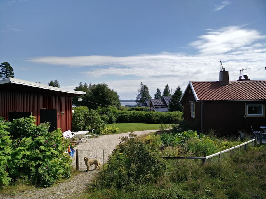 Utsikt mot Bergafjärden