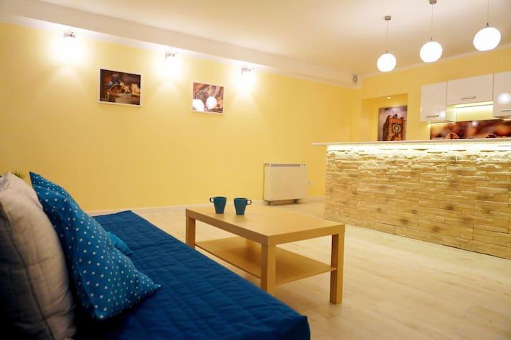 Apartament - Stare Miasto - Toruń - Apartamento