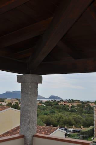 Terrace view.