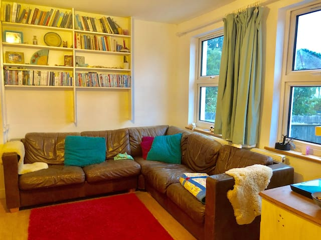 Fab  Brighton  Seascape home and double parking