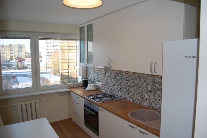 Comfortable apartment Kaunas city