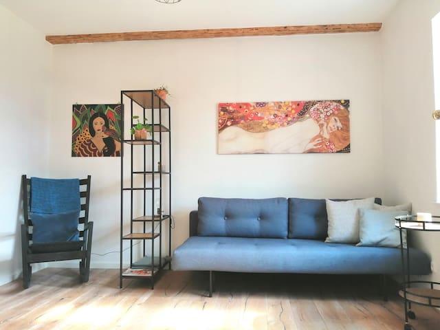 Hyggelig ét-værelses lejlighed tæt på det hele