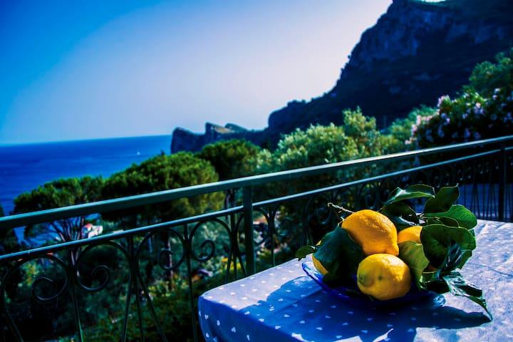 Villa Nesea ...  Your Italian Dream ... - Nerano - Villa