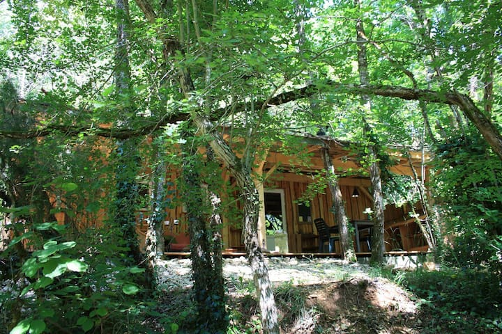 Nice cottage in the woods near Montignac-Lascaux