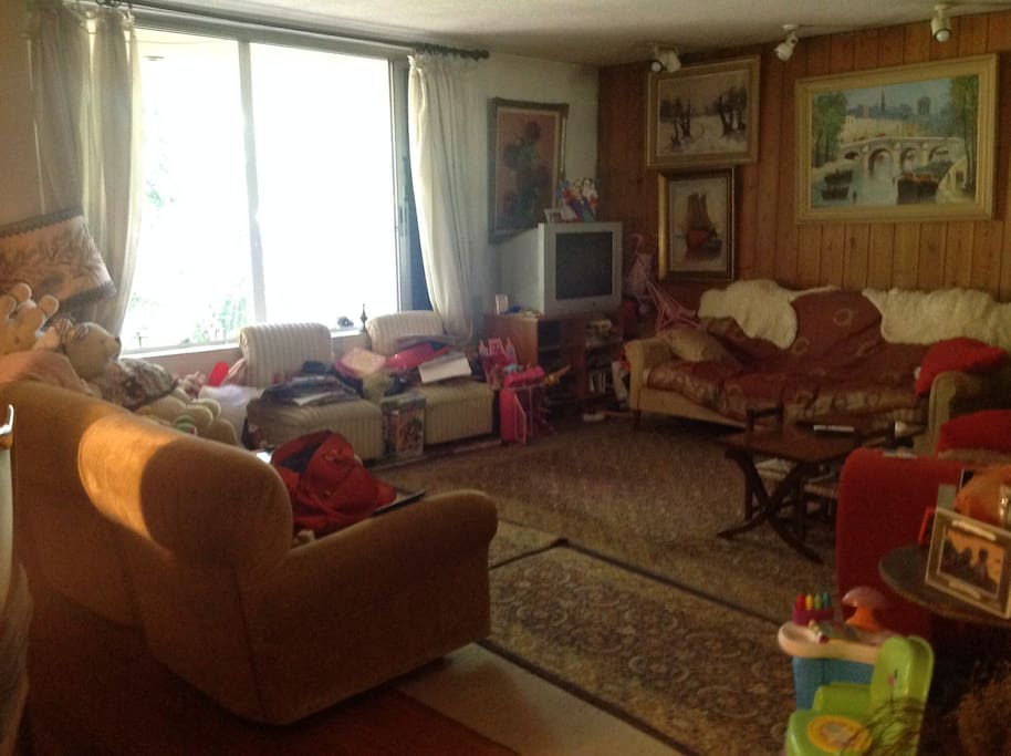 the living room which has also a double size sofa bed where another two people could sleep