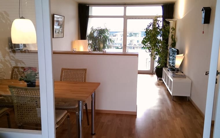 Bright appartment with sky view - Friburgo - Apartamento