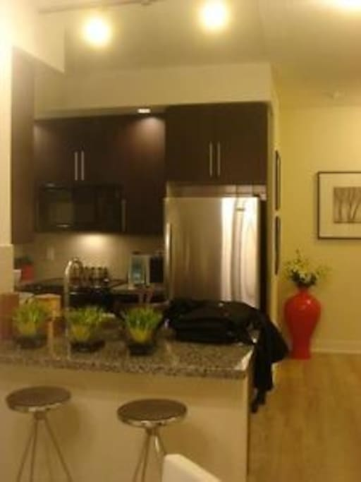 Modern Kitchen, fully loaded with appliances