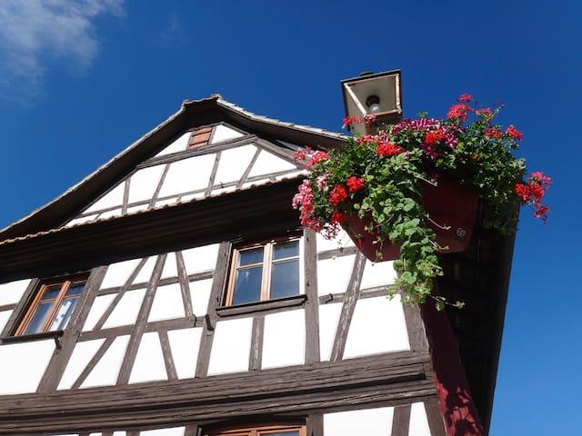 Maison 9 personnes STRASBOURG - Geispolsheim - Casa