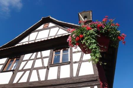 Maison 9 personnes STRASBOURG - Geispolsheim - Hus