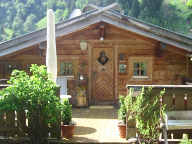 Cozy apartment/cabin in Dienten near Salzburg