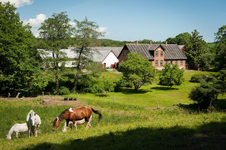 Beautiful farm in peaceful nature - Ebeltoft - Daire