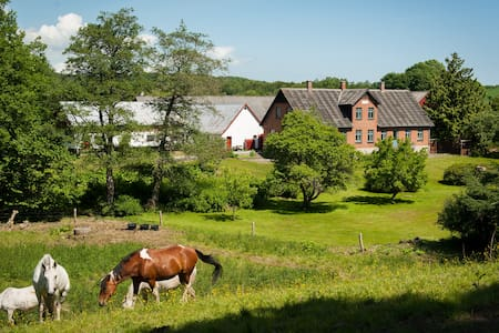 Beautiful farm in peaceful nature - Ebeltoft