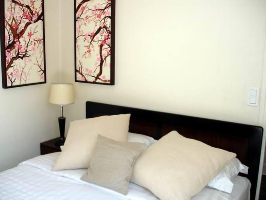 Chambre avec lit 160x200 avec salle de bain/douche attenante.