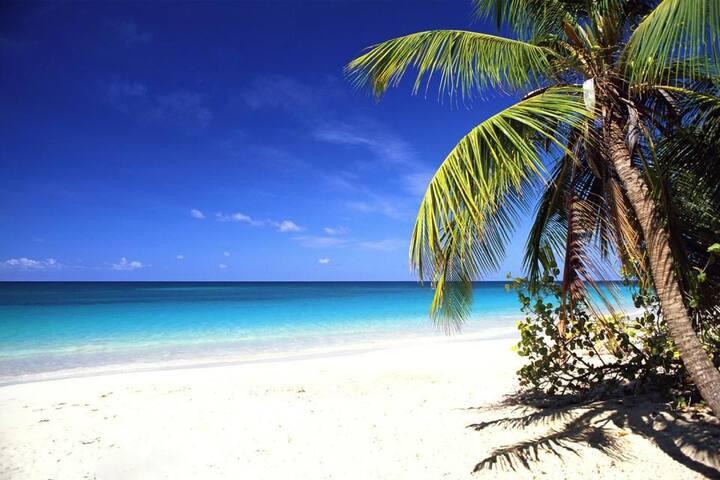 Gite Brume de Mer,  proche des plages du Sud
