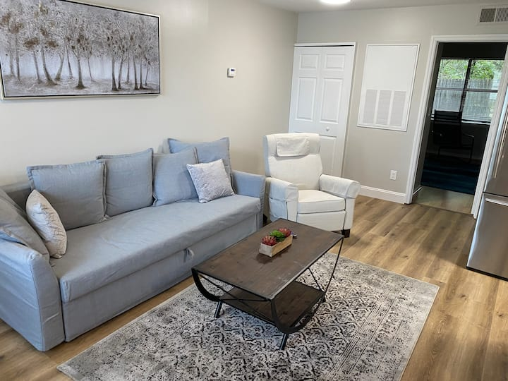 BRAND NEW! Furnished and Remodeled 1BR apartment