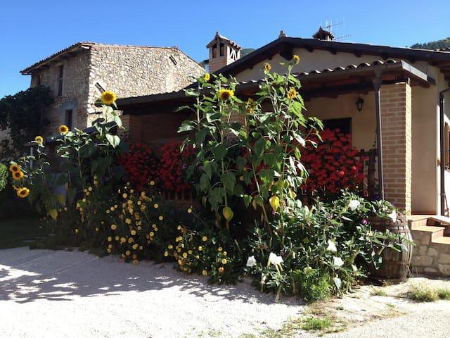 Casa di montagna nel verde Abruzz   - Barete - Huis