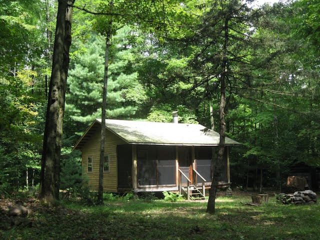 Woodland cabin - near Oneida Lake - Camden - Blockhütte