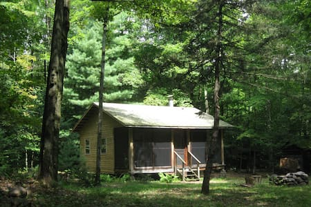 Woodland cabin - near Oneida Lake - Kisház