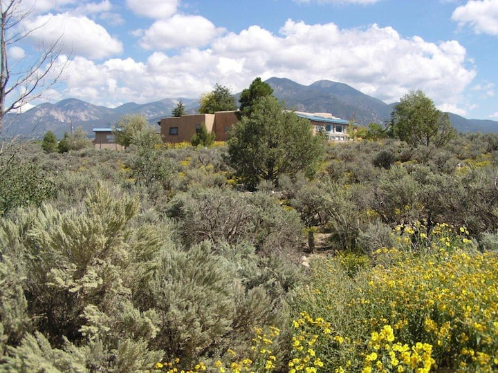 "Sage Waters of Taos-""Sunflower Suite""- for One"