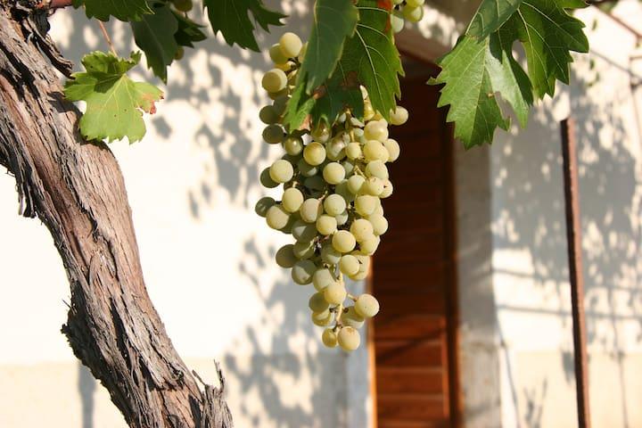 Beautiful Country House in Malinska - Malinska - Casa