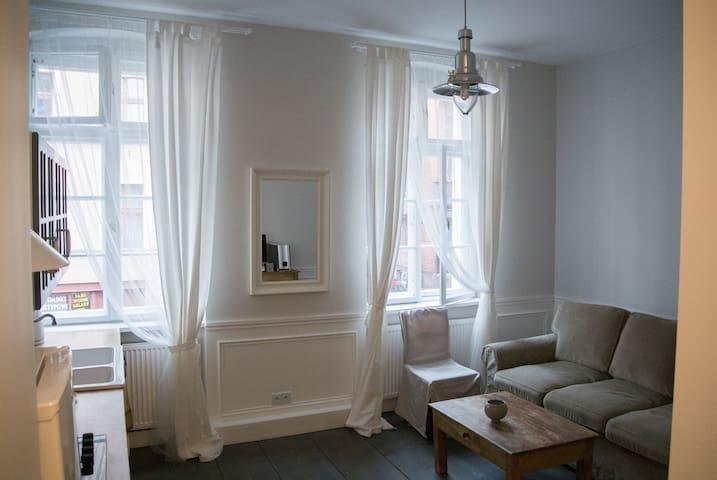 Stylowy apartament - Stare Miasto - Toruń