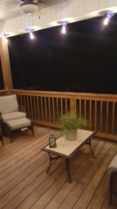 Covered back porch with lights and fan.