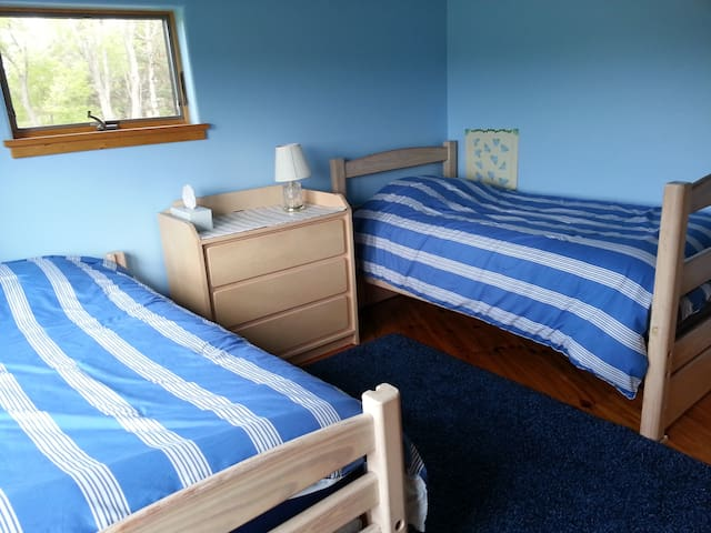 Tenwood's Blue Twin Room - Ithaca - Bed & Breakfast