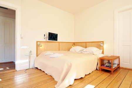 1668 ft2 artist flat on Vesterbro - Copenhagen - Apartment
