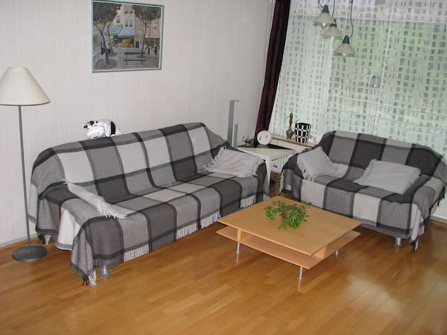 Two beautiful rooms 38m2 + balcony! - Helsinki - Huoneisto