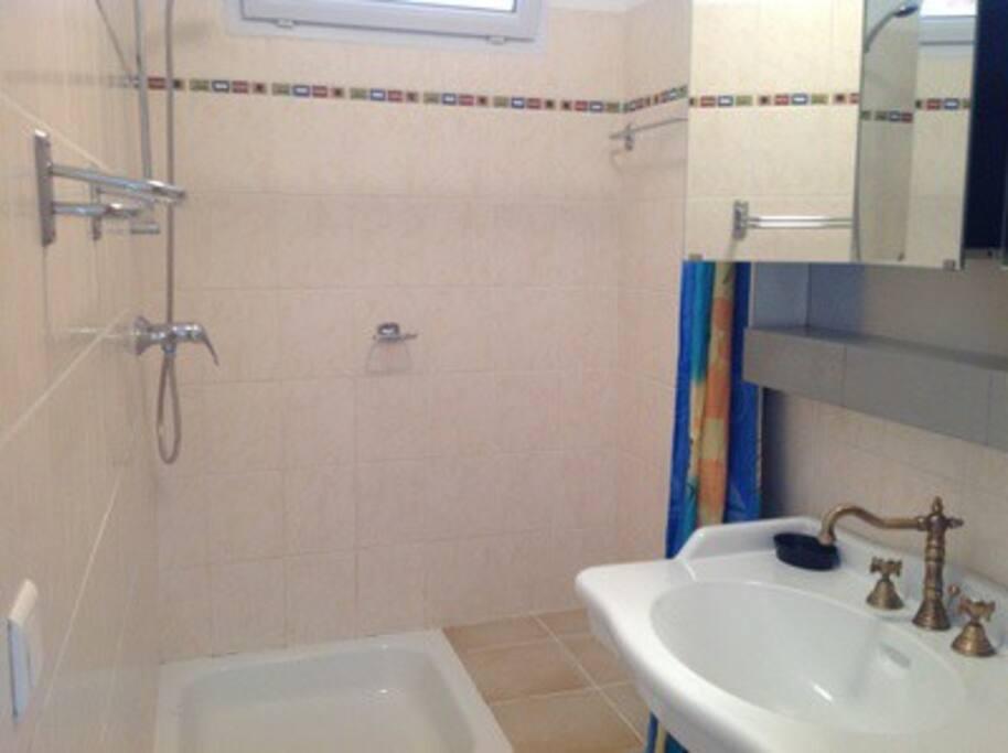 la salle de douche, les toilettes sont à droite du lavabo