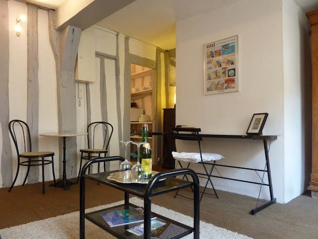 Charming studio in town center