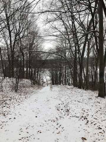 Path through the woods down to the lake In wintertime.  Bring your snowmobiles !