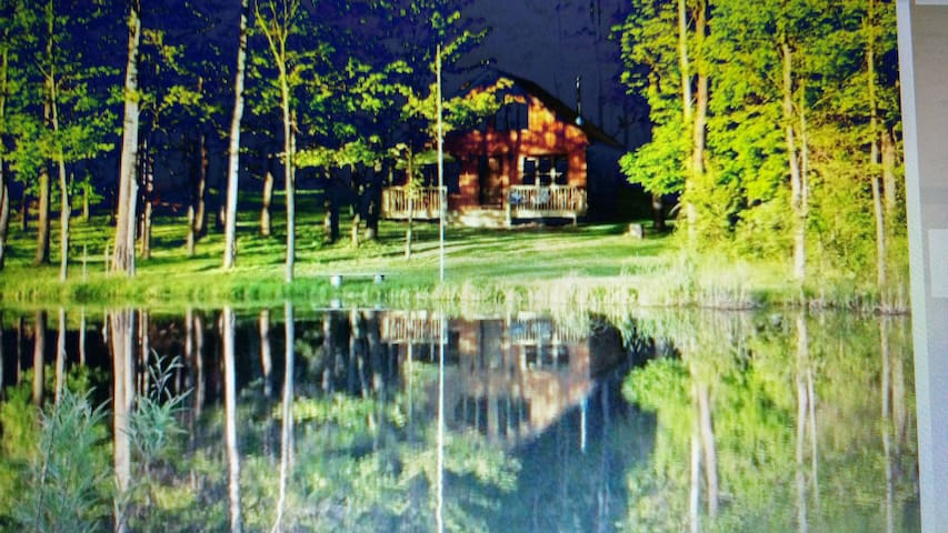 BEAUTIFUL PRIVATE CABIN!! - Bemus Point - Cottage