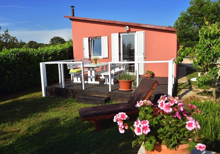 Isolated quite house Vrsar (garden +parking)