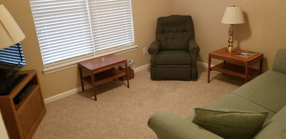 Spare bedroom with sofabed.