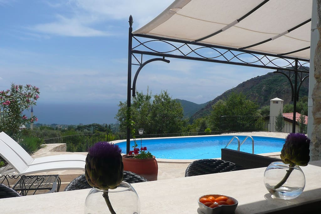 View from the shared-swimming pool & kitchenette-bar