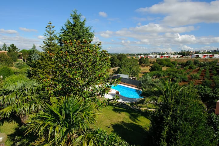 Viottolo - Apartment Alberobello  - Noci - บ้าน