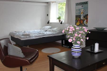Large room near downtown Århus. - Brabrand - 獨棟