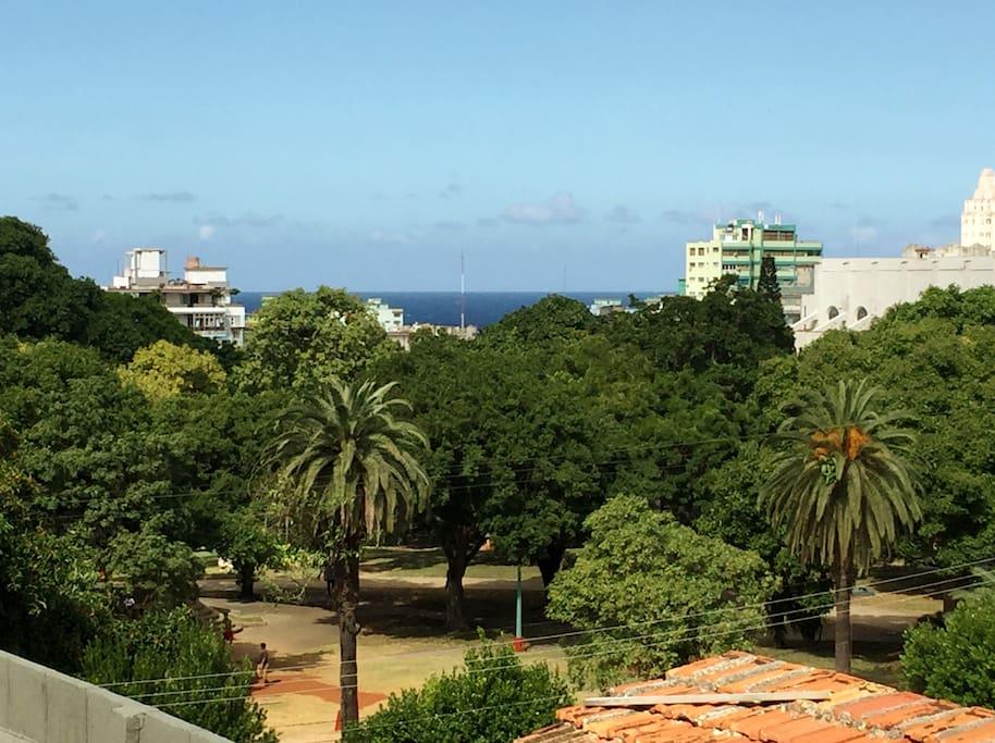 vista desde el balcón del apartamento, hay un bello parque  a  20 metros y al fondo a 10 cuadras el mar